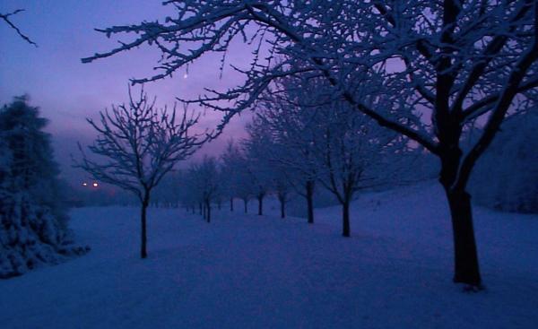 Snowy evening at Shaw's Bridge in Belfast