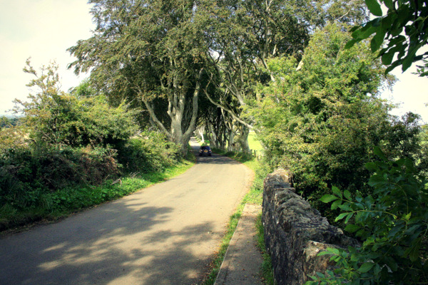 Dark_Hedges_Greenway